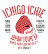 icon-ichigoichie-japaantour